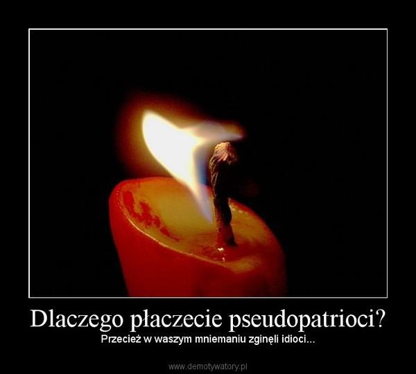 Dlaczego płaczecie pseudopatrioci? – Przecież w waszym mniemaniu zginęli idioci...