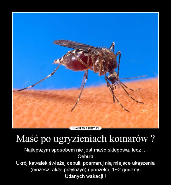 Maść po ugryzieniach komarów ? – Najlepszym sposobem nie jest maść sklepowa, lecz ...\nCebula\nUkrój kawałek świeżej cebuli, posmaruj nią miejsce ukąszenia (możesz także przyłożyć) i poczekaj 1~2 godziny.\nUdanych wakacji !