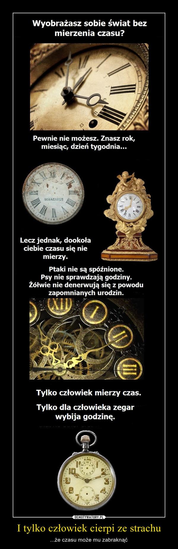 I tylko człowiek cierpi ze strachu – ...że czasu może mu zabraknąć