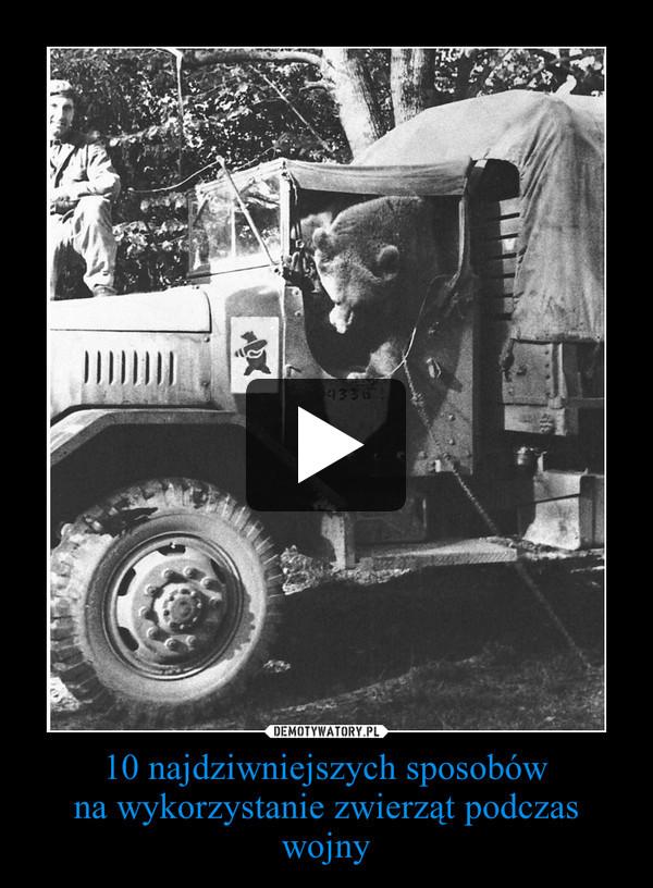 10 najdziwniejszych sposobówna wykorzystanie zwierząt podczas wojny –