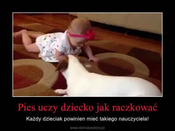 Pies uczy dziecko jak raczkować – Każdy dzieciak powinien mieć takiego nauczyciela!
