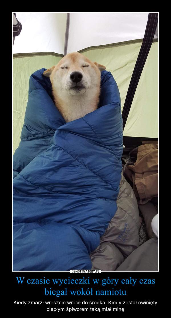 W czasie wycieczki w góry cały czas biegał wokół namiotu – Kiedy zmarzł wreszcie wrócił do środka. Kiedy został owinięty ciepłym śpiworem taką miał minę