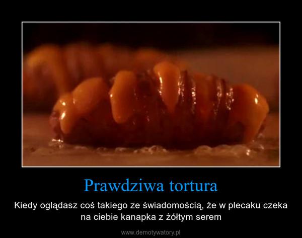 Prawdziwa tortura – Kiedy oglądasz coś takiego ze świadomością, że w plecaku czeka na ciebie kanapka z żółtym serem