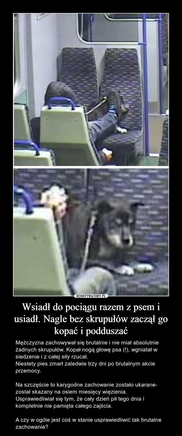 Wsiadł do pociągu razem z psem i usiadł. Nagle bez skrupułów zaczął go kopać i podduszać – Mężczyzna zachowywał się brutalnie i nie miał absolutnie żadnych skrupułów. Kopał nogą głowę psa (!), wgniatał w siedzenie i z całej siły rzucał.Niestety pies zmarł zaledwie trzy dni po brutalnym akcie przemocy.Na szczęście to karygodne zachowanie zostało ukarane- został skazany na osiem miesięcy więzienia. Usprawiedliwiał się tym, że cały dzień pił tego dnia i kompletnie nie pamięta całego zajścia.A czy w ogóle jest coś w stanie usprawiedliwić tak brutalne zachowanie?