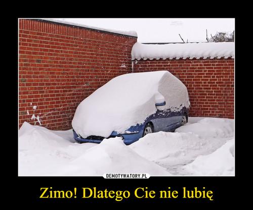 Zimo! Dlatego Cie nie lubię