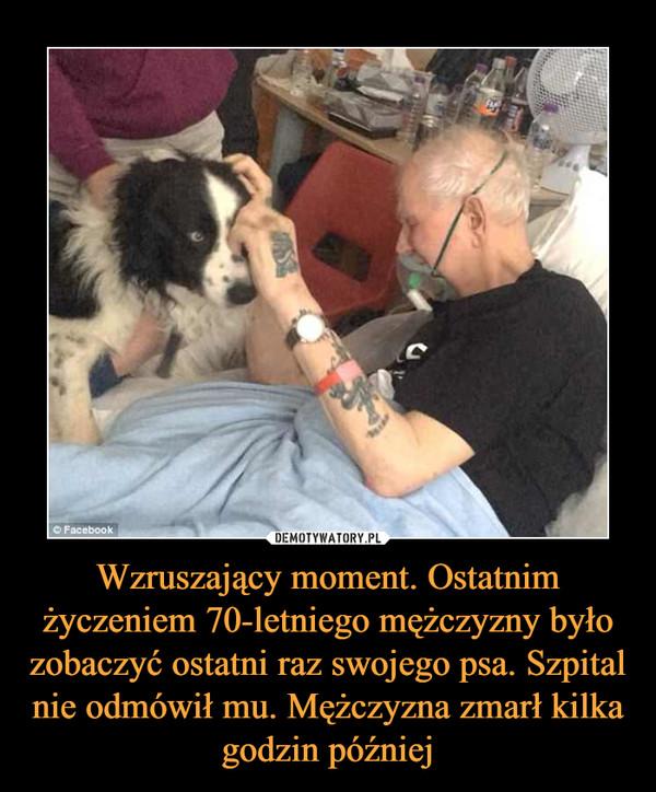 Wzruszający moment. Ostatnim życzeniem 70-letniego mężczyzny było zobaczyć ostatni raz swojego psa. Szpital nie odmówił mu. Mężczyzna zmarł kilka godzin później –