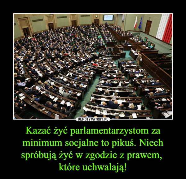 Kazać żyć parlamentarzystom za minimum socjalne to pikuś. Niech spróbują żyć w zgodzie z prawem, które uchwalają! –