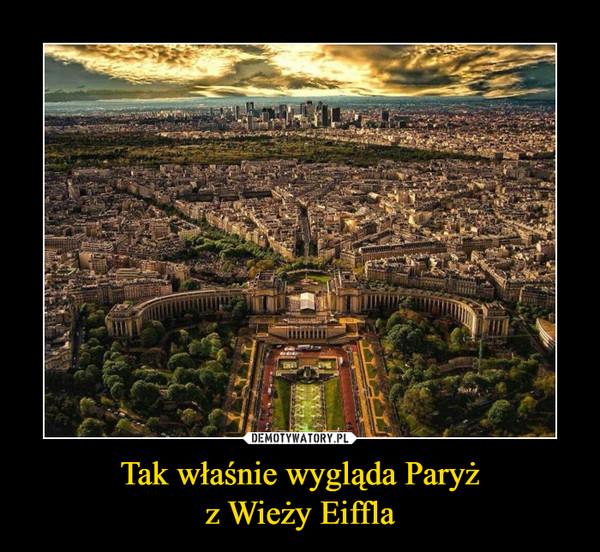 Tak właśnie wygląda Paryżz Wieży Eiffla –