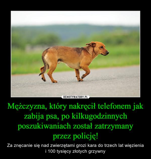 Mężczyzna, który nakręcił telefonem jak zabija psa, po kilkugodzinnych poszukiwaniach został zatrzymanyprzez policję! – Za znęcanie się nad zwierzętami grozi kara do trzech lat więzienia i 100 tysięcy złotych grzywny