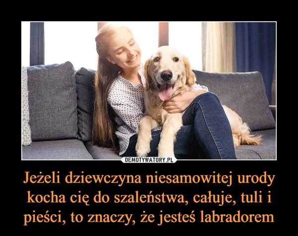 Jeżeli dziewczyna niesamowitej urody kocha cię do szaleństwa, całuje, tuli i pieści, to znaczy, że jesteś labradorem –