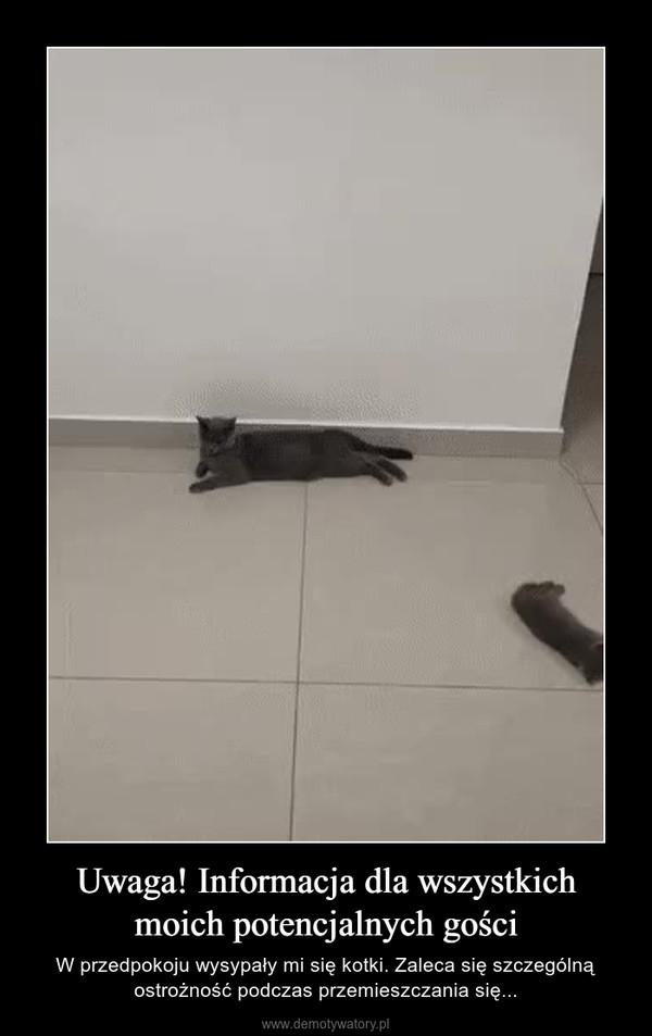 Uwaga! Informacja dla wszystkich moich potencjalnych gości – W przedpokoju wysypały mi się kotki. Zaleca się szczególną ostrożność podczas przemieszczania się...