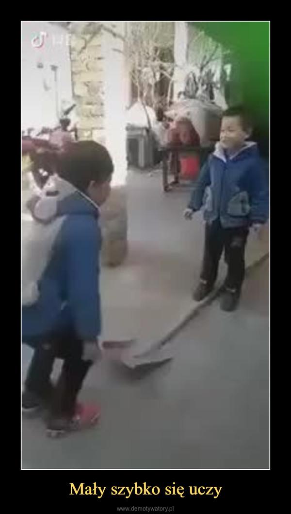 Mały szybko się uczy –
