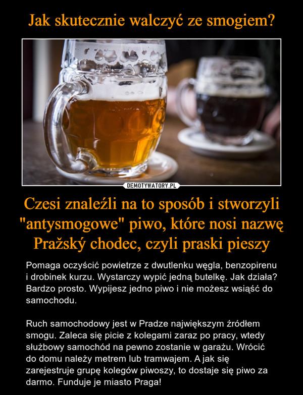 """Czesi znaleźli na to sposób i stworzyli """"antysmogowe"""" piwo, które nosi nazwę Pražský chodec, czyli praski pieszy – Pomaga oczyścić powietrze z dwutlenku węgla, benzopirenu i drobinek kurzu. Wystarczy wypić jedną butelkę. Jak działa? Bardzo prosto. Wypijesz jedno piwo i nie możesz wsiąść do samochodu.Ruch samochodowy jest w Pradze największym źródłem smogu. Zaleca się picie z kolegami zaraz po pracy, wtedy służbowy samochód na pewno zostanie w garażu. Wrócić do domu należy metrem lub tramwajem. A jak się zarejestruje grupę kolegów piwoszy, to dostaje się piwo za darmo. Funduje je miasto Praga!"""