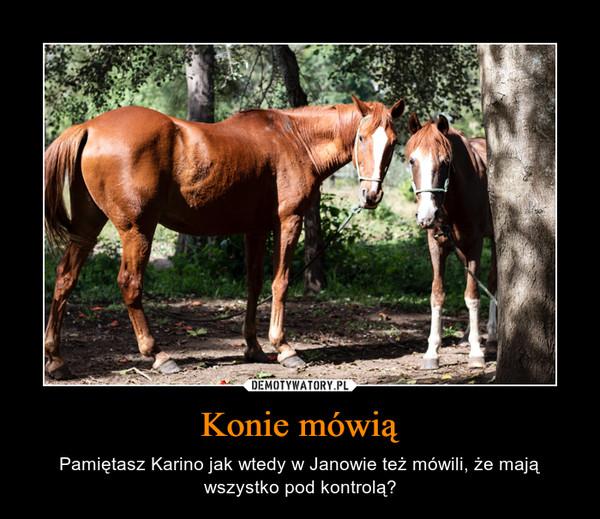 Konie mówią – Pamiętasz Karino jak wtedy w Janowie też mówili, że mają wszystko pod kontrolą?