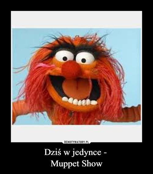 Dziś w jedynce -  Muppet Show