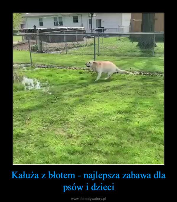 Kałuża z błotem - najlepsza zabawa dla psów i dzieci –
