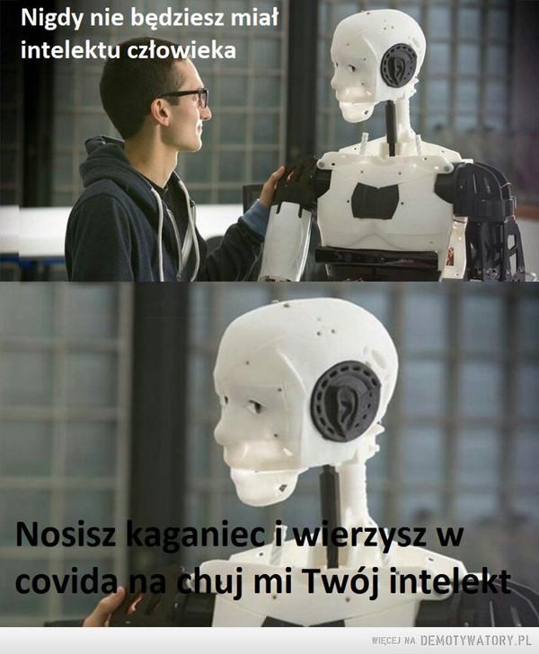 intelekt –