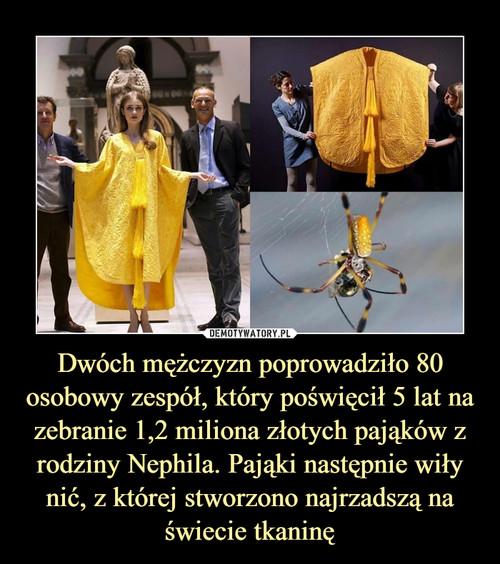 Dwóch mężczyzn poprowadziło 80 osobowy zespół, który poświęcił 5 lat na zebranie 1,2 miliona złotych pająków z rodziny Nephila. Pająki następnie wiły nić, z której stworzono najrzadszą na świecie tkaninę
