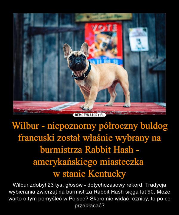 Wilbur - niepoznorny półroczny buldog francuski został właśnie wybrany na burmistrza Rabbit Hash - amerykańskiego miasteczka w stanie Kentucky – Wilbur zdobył 23 tys. głosów - dotychczasowy rekord. Tradycja wybierania zwierząt na burmistrza Rabbit Hash sięga lat 90. Może warto o tym pomyśleć w Polsce? Skoro nie widać róznicy, to po co przepłacać?