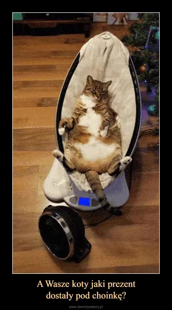 A Wasze koty jaki prezentdostały pod choinkę? –