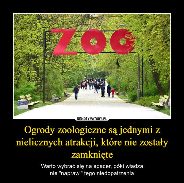"""Ogrody zoologiczne są jednymi z nielicznych atrakcji, które nie zostały zamknięte – Warto wybrać się na spacer, póki władzanie """"naprawi"""" tego niedopatrzenia"""