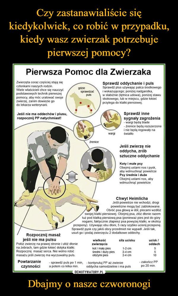 Dbajmy o nasze czworonogi –  Pierwsza Pomoc dla Zwierzaka Zwierzęta coraz częściej stają się członkami naszych rodzin. Wiele właścicieli chce się nauczyć podstawowych technik pierwszej pomocy, aby móc uratować swoje zwierzę, zanim dowiezie go do lekarza weterynarii. Jeśli nie ma oddechów i plusu. rozpocznij PP natychmiast! gdzie . sprawdzać puls • Sprawdź oddychanie i puls Sprawdź plus używając palca środkowego i wskazującego; poniżej nadgarstka, w słabiźnie (tętnica udowa), poniżej stawu skokowego, lub w miejscu, gdzie łokieć przylega do klatki piersiowej. 7 Sprawdź inne sygnały zagrożenia - wargi będą blade - źrenice będą rozszerzone i nie będą regowały na wargi światło źrenice Jeśli zwierzę nie oddycha, zrób sztuczne oddychanie Koty i male psy Obejmij ustami nos i pysk, aby wdmuchnąć powietrze Psy średnie i duże Obejmij ustami nos, aby wdmuchnąć powietrze Chwyt Heimlicha Jeśli powietrze nie wchodzi, drogi powietrzne mogą być zablokowane. Obróć psa głową w dół, plecami wzdłóż swojej klatki piersiowej. Obejmij psa, złóż dłonie razem tuż pod klatką piersiową psa (ponieważ pies jest do góry nogami, faktycznie złapiesz psa powyżej klatki, w okolicy przepony). Używając obu dłoni, 5 razy szybko ucisnij przeponę. Sprawdż pysk czy jakiś obcy przedmiot nie wypadł. Jeśli tak, usuń go i podaj zwierzęciu 2 dodatkowe oddechy. Rozpocznij masaż jeśli nie ma pulsu wielkość Połóż zwierzę na prawej stronie i ułóż dłonie zwierzęcia na żebrach, tam gdzie łokieć dotyka klatki. Rozpocznij masaż serca. Nie wolno robić masażu jeśli zwierzę ma wyczuwalny puls. siła ucisku ucisk / oddech kot / mały pies 1-2 cm 5 średni / duży pies 2-4 cm 5 olbżyrni pies 2-4 cm 10 Powtarzanie - sprawdż puls po 1 min, - kontynułuj PP aż zwierze czynności a potem co kilka min. oddycha samodzielnie i ma puls - zakończ PP po 20 min.