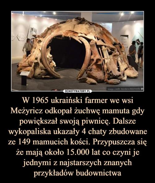 W 1965 ukraiński farmer we wsi Meżyricz odkopał żuchwę mamuta gdy powiększał swoją piwnicę. Dalsze wykopaliska ukazały 4 chaty zbudowane ze 149 mamucich kości. Przypuszcza się że mają około 15.000 lat co czyni je jednymi z najstarszych znanych przykładów budownictwa