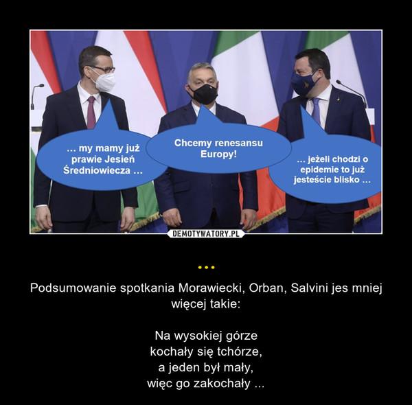 ... – Podsumowanie spotkania Morawiecki, Orban, Salvini jes mniej więcej takie:Na wysokiej górzekochały się tchórze,a jeden był mały,więc go zakochały ...