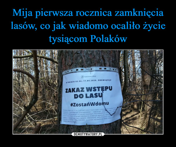 –  ZAKAZ WSTĘPU DO LASU