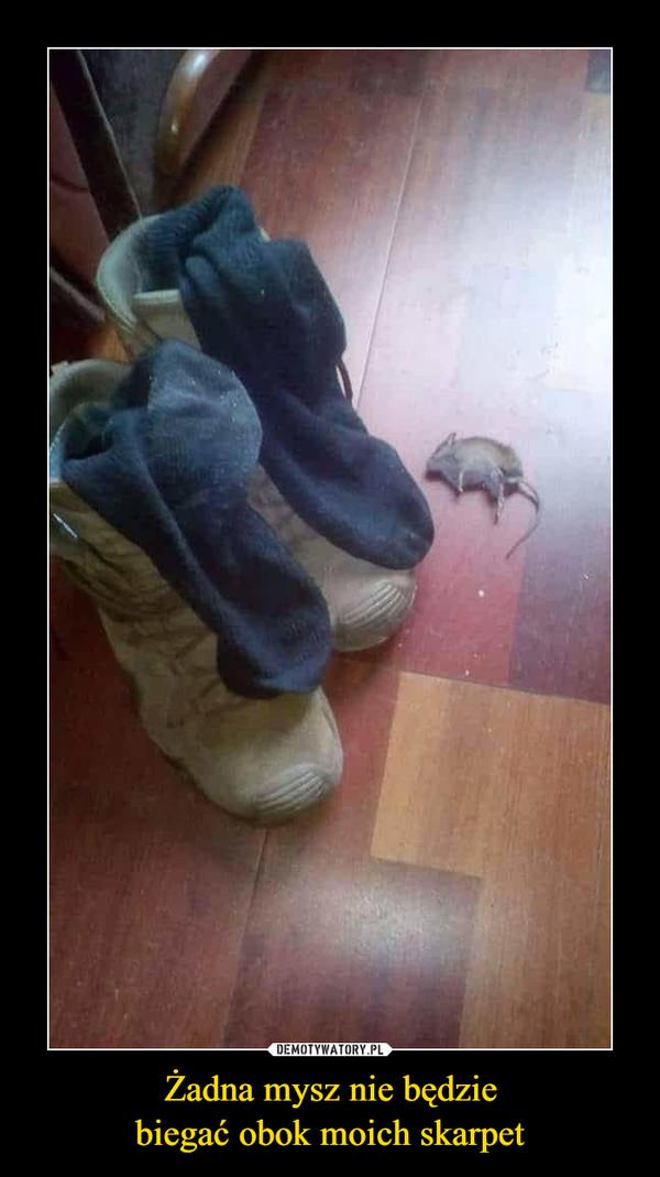 Żadna mysz nie będziebiegać obok moich skarpet –