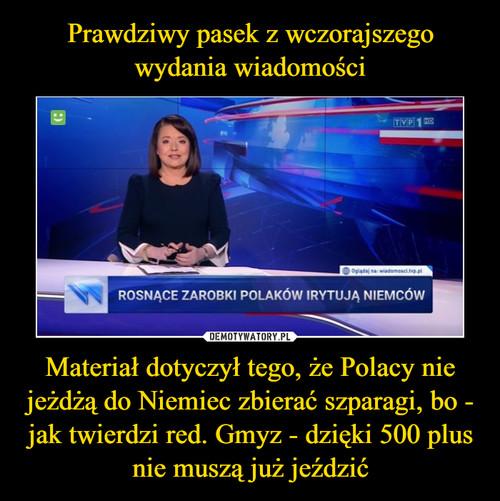 Prawdziwy pasek z wczorajszego wydania wiadomości Materiał dotyczył tego, że Polacy nie jeżdżą do Niemiec zbierać szparagi, bo - jak twierdzi red. Gmyz - dzięki 500 plus nie muszą już jeździć