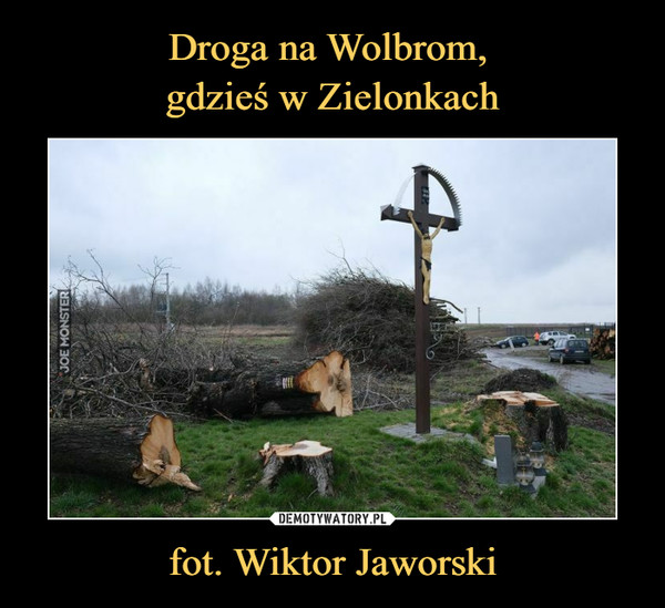 fot. Wiktor Jaworski –