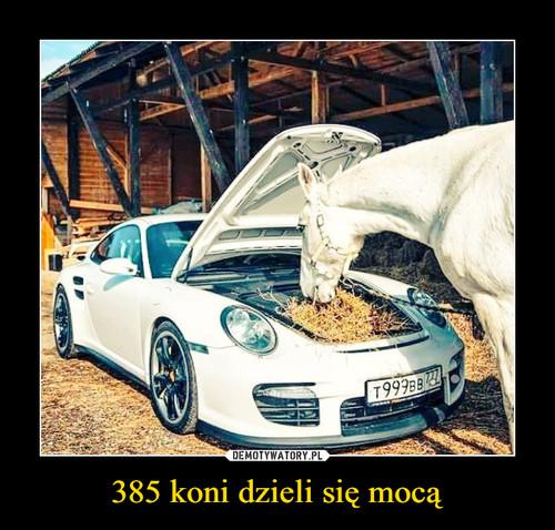 385 koni dzieli się mocą