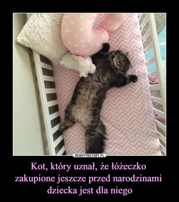 Kot, który uznał, że łóżeczko zakupione jeszcze przed narodzinami dziecka jest dla niego –