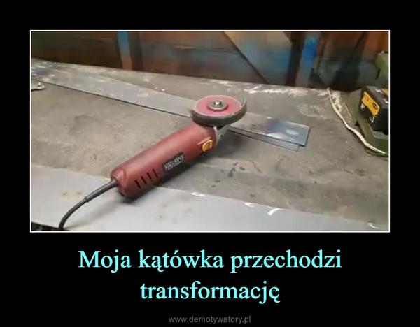 Moja kątówka przechodzi transformację –