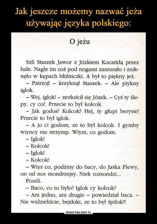 Jak jeszcze możemy nazwać jeża używając języka polskiego: