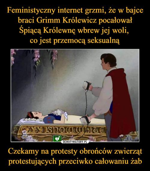 Feministyczny internet grzmi, że w bajce braci Grimm Królewicz pocałował Śpiącą Królewnę wbrew jej woli,  co jest przemocą seksualną Czekamy na protesty obrońców zwierząt protestujących przeciwko całowaniu żab