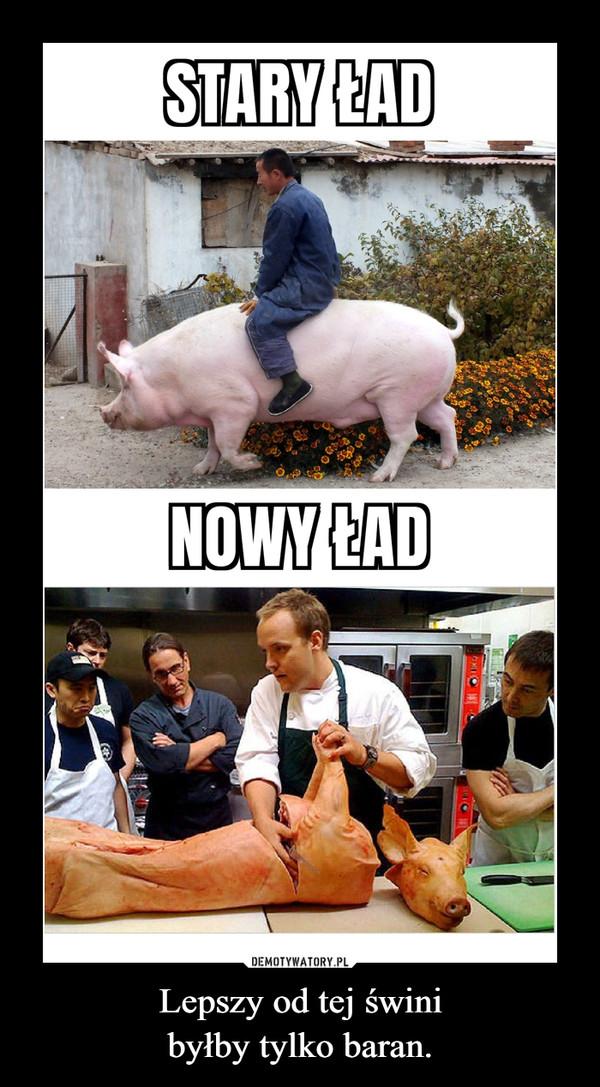 Lepszy od tej świnibyłby tylko baran. –