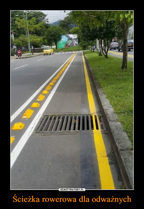 Ścieżka rowerowa dla odważnych