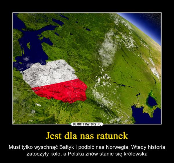 Jest dla nas ratunek – Musi tylko wyschnąć Bałtyk i podbić nas Norwegia. Wtedy historia zatoczyły koło, a Polska znów stanie się królewska