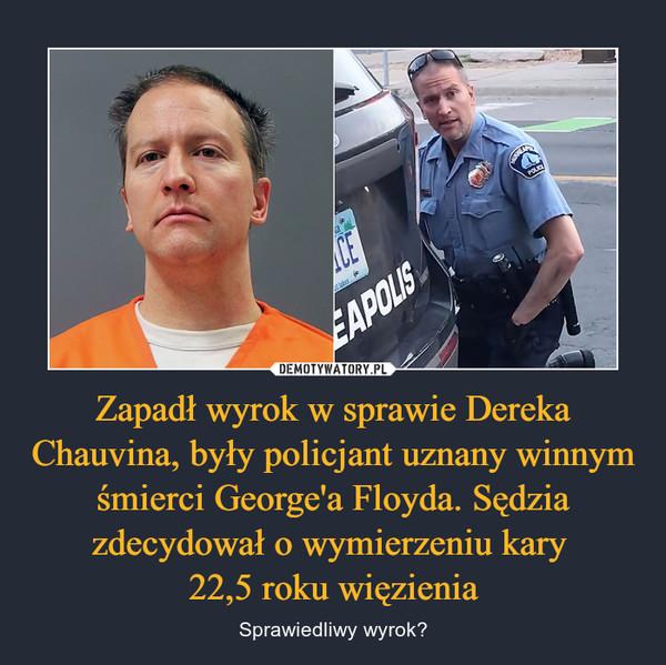 Zapadł wyrok w sprawie Dereka Chauvina, były policjant uznany winnym śmierci George'a Floyda. Sędzia zdecydował o wymierzeniu kary 22,5 roku więzienia – Sprawiedliwy wyrok?