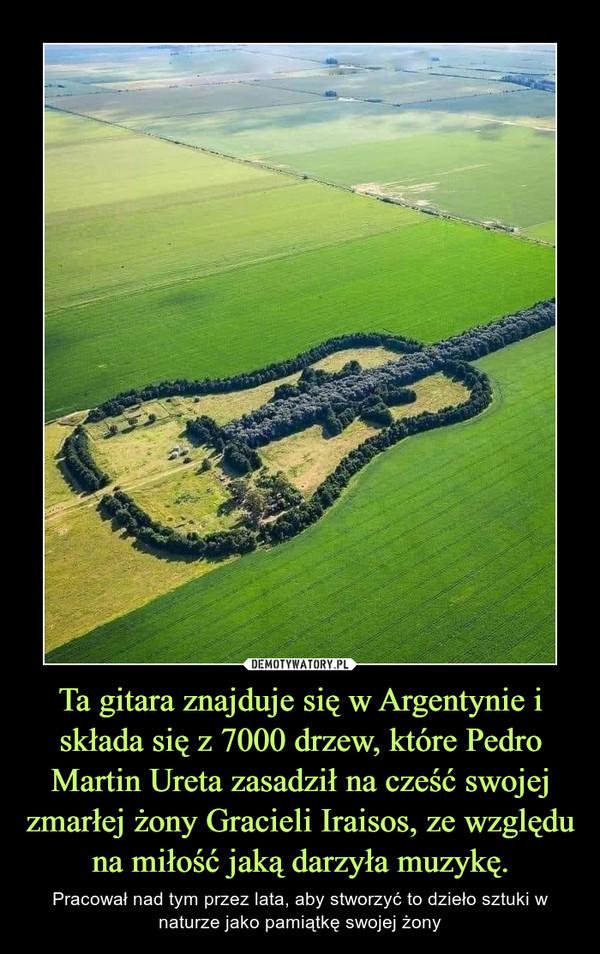 Ta gitara znajduje się w Argentynie i składa się z 7000 drzew, które Pedro Martin Ureta zasadził na cześć swojej zmarłej żony Gracieli Iraisos, ze względu na miłość jaką darzyła muzykę. – Pracował nad tym przez lata, aby stworzyć to dzieło sztuki w naturze jako pamiątkę swojej żony