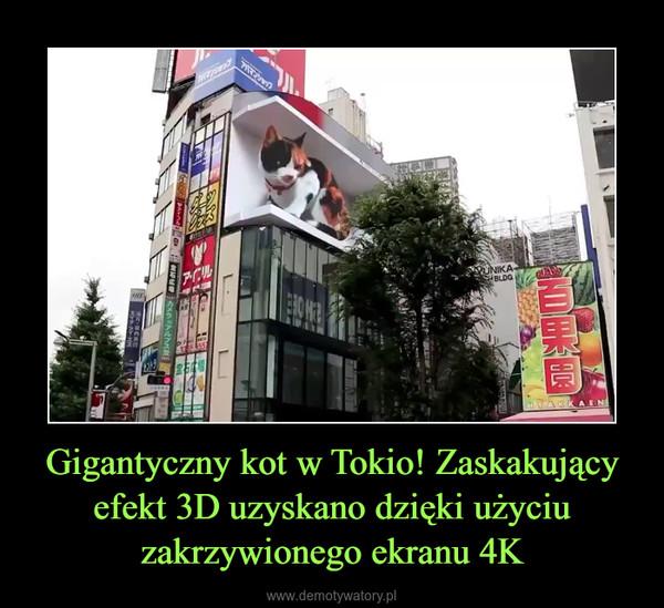 Gigantyczny kot w Tokio! Zaskakujący efekt 3D uzyskano dzięki użyciu zakrzywionego ekranu 4K –