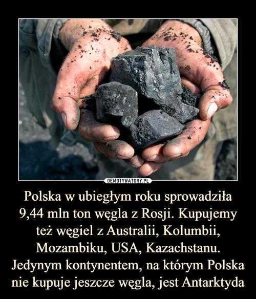 Polska w ubiegłym roku sprowadziła 9,44 mln ton węgla z Rosji. Kupujemy też węgiel z Australii, Kolumbii, Mozambiku, USA, Kazachstanu. Jedynym kontynentem, na którym Polska nie kupuje jeszcze węgla, jest Antarktyda