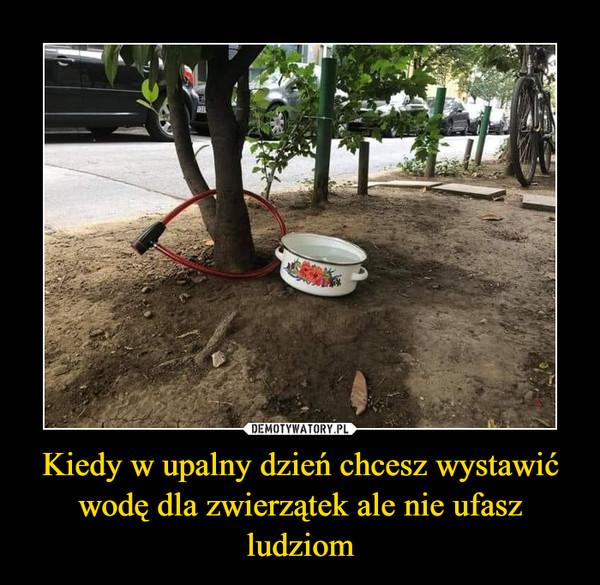 Kiedy w upalny dzień chcesz wystawić wodę dla zwierzątek ale nie ufasz ludziom –