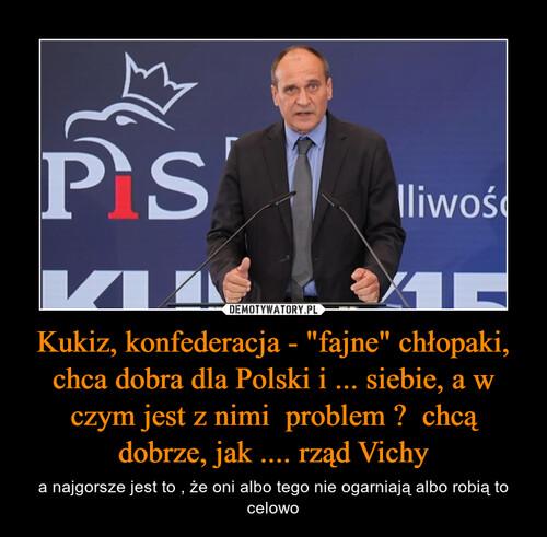 """Kukiz, konfederacja - """"fajne"""" chłopaki, chca dobra dla Polski i ... siebie, a w czym jest z nimi  problem ?  chcą dobrze, jak .... rząd Vichy"""