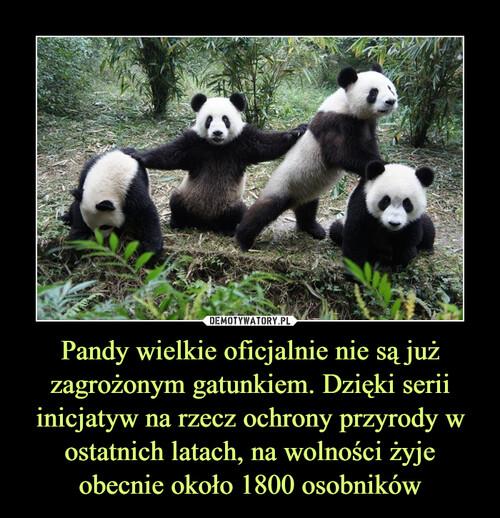 Pandy wielkie oficjalnie nie są już zagrożonym gatunkiem. Dzięki serii inicjatyw na rzecz ochrony przyrody w ostatnich latach, na wolności żyje obecnie około 1800 osobników