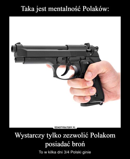 Taka jest mentalność Polaków: Wystarczy tylko zezwolić Polakom posiadać broń